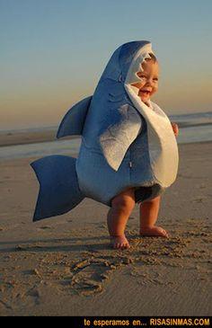 Disfraz tiburón de bebé | Risa Sin Más