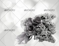Beautiful flowers bokeh background with place for text 4