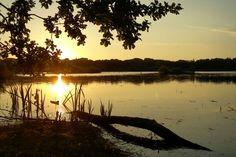 Zonsondergang bij het Grootmeer tussen Wintelre en Vessem. Celestial, Sunset, Outdoor, Outdoors, Sunsets, Outdoor Games, The Great Outdoors, The Sunset