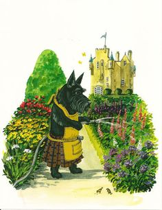 8x10 Print of Painting Scottish Terrier Macduff RYTA Scottie English Garden Folk | eBay