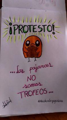#RevolucionPajaresca apoyame!! No somos un trofeo