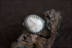 Fossilized Sand Dollar set in Sterling by RoseMetalsJewelry, $134.00
