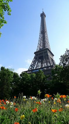 The Eiffel Tower www.MadamPaloozaEmporium.com www.facebook.com/MadamPalooza