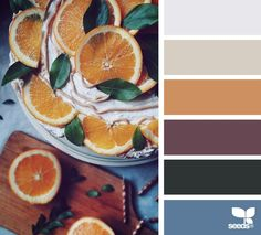 seasonal serving | design seeds | Bloglovin'
