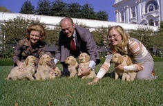 President and Mrs. Gerald R. Ford and daughter Susan play with Liberty's golden retriever puppies on the South Lawn of the White House. November 5, 1975.