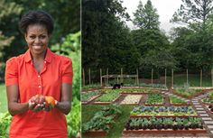 In her book, Michelle Obama shares her experiences creating a kitchen garden for the White House.