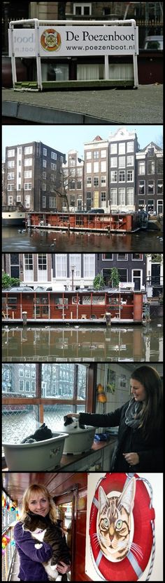 The Cat Boat (De Poezenboot) houseboat cat rescue shelter in Amsterdam, The…