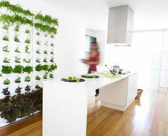 Dyrk krydderurter lodret - Minigarden til køkken, altan, eller husmur-fra MoreLand