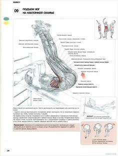 9. Подъем ног на наклонной скамье