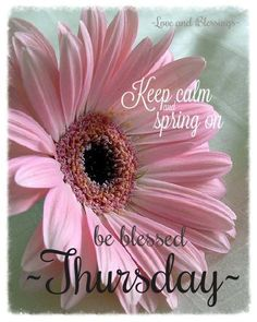 Have a blessed Thursday!  ~ JN ~