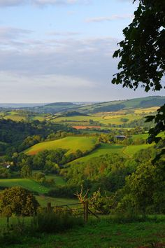 Green-quilted Devon, England. by foreverfrodo