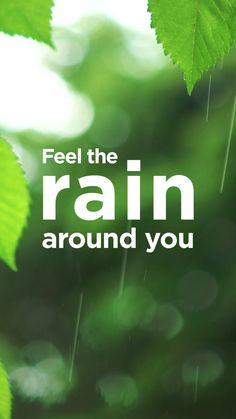Meditate to the Sound of Rain - The Mindfulness App