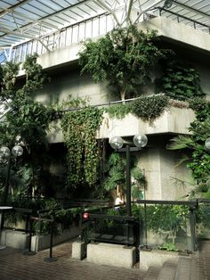 barbican conservatory - Google Search