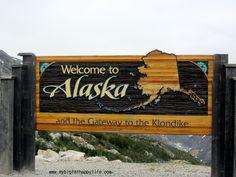 White Pass Summit Train Skagway Alaska #disneycruise #alaska | mybigfathappylife.com