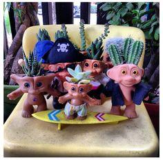 treasure troll succulent pots!