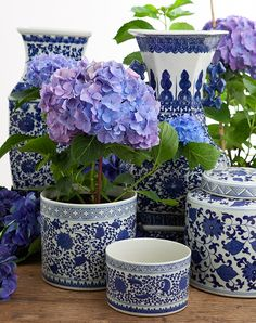 Our Dynasty orchid pot is made from high quality ceramics and is printed with classic blue & white patterns. Blue And White China, Blue China, Chinoiserie, Orchid Pot, Blue Pottery, Ginger Jars, White Decor, White Porcelain, Shades Of Blue