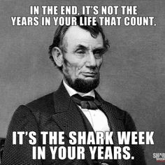 So looking forward to Shark Week!!