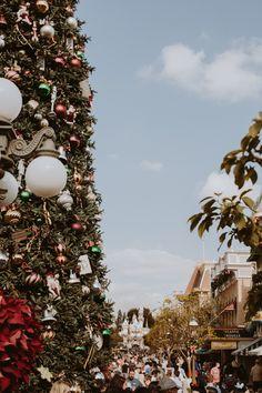 Disneyland Christmas ❁ @andisakowski Disneyland Christmas, Surf, Christmas Mood, Xmas, Road Trip, Christmas Aesthetic, Disney Love, Disney Magic, Joy To The World