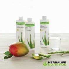 Herbalife 24, Herbalife Nutrition, Aloe Vera, Vertical Wall Planters, Cute Hairstyles For Kids, Helfer, Grocery Lists, Herbal Medicine, Herbalism