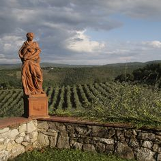 Tuscan's story: Olive groves, Tuscany -   Contact me for any Questions about the Real Estate Market, Schools, Communities around Irvine, CA. If You are planning to Relocate to Orange County or are Looking for Vacation Home & Investment Property Please do not hesitate to Send me an Email www.IrvineHomeBlog.com