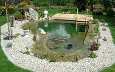 Schwimmteich Fotos, Schwimmteich Bilder, Gartenteich Bilder, Teichfotos & Teichb… - All For Garden Swimming Pool Pond, Natural Swimming Ponds, Natural Pond, Garden Pond, Water Garden, Ponds Backyard, Backyard Landscaping, Landscaping Ideas, Pond Design