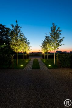 Find the Perfect Landscape Lighting Design for Your Backyard Driveway Lighting, Driveway Entrance, Exterior Lighting, Outdoor Garden Lighting, Outdoor Gardens, Landscape Lighting Design, Driveway Design, Long Driveways, Casas Containers
