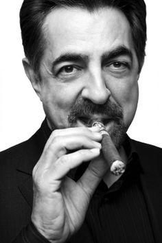 "Joseph Anthony ""Joe"" Mantegna, Jr. (born November 13, 1947) is an American actor, producer, writer, director, and voice actor."
