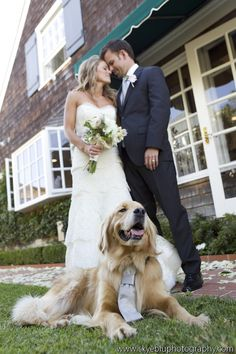Dog wearing a tie in wedding pic.... How stinkinggggg cute!!