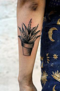 succulents tattoo aloe