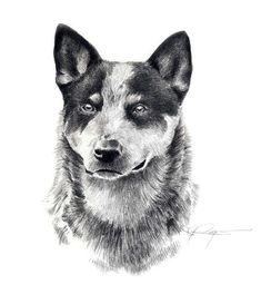 Everything I admire about the Corgis Puppy pembroke welsh corgi Corgi Facts, Beach Watercolor, Dog Beach, Pembroke Welsh Corgi, Australian Cattle Dog, Dog Portraits, Dog Art, Dog Breeds, Cattle Dogs