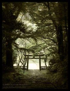 Trailhead Tori - Nogata, Japan by ~AndrewMarston on deviantART. The path to Asian Cottage.