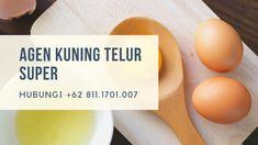 READY STOK!!! WA +62 822.1919.9897, Jual Kuning Telur Fresh Jakarta SelatanPutih Telur Untuk Kebutuhan Anda, Bisa COD, Ambil Di tempat, atau Kirim Via Kurir Ojek Online, Ready Stok, Untuk Informasi lebih Lanjut Silahkan Hubungi Kami di+62 813.8008.5544 | Khaya. Atau Bisa Langsung Ke Alamat Kami Di Jalan Jaya Kusuma 1 No 06, RT 07/RW 01, Kp Makasar, Jakarta Timur 13570, Jakarta. Distributor Kuning Telur Frozen Jakarta Utara, Distributor Kuning Telur Fitnes Jakarta Utara, Bakery, Frozen, Make It Yourself, Bakery Business, Bakeries