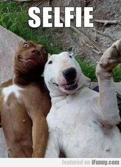 girls be lke...Selfie