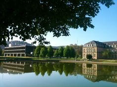 Stuttgarter Schloßgarten mit Blick auf den Landtag, das neue Schloß und den Fernsehturm.