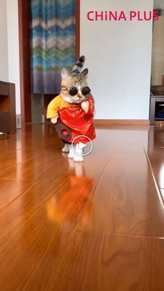 Funny cat walk, cat in costume showing her sassy walk. Source by artsipaws videos wallpaper cat cat memes cat videos cat memes cat quotes cats cats pictures cats videos Funny Animal Memes, Funny Animal Videos, Cute Funny Animals, Funny Animal Pictures, Cute Baby Animals, Funny Cute, Cute Cats, Funny Cat Pics, Funny Baby Memes