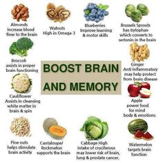 Must read nutrition advice to put together any meal nutritious. Try this quite handy nutrition pin-image number 9054042261 today. Healthy Brain, Healthy Tips, How To Stay Healthy, Healthy Recipes, Healthy Foods, Foods For Brain Health, Eating Healthy, Health And Nutrition, Health And Wellness