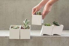 VERD&ÁGUA · home gardening kit on Behance