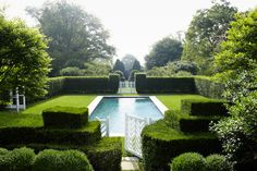 Yew hedges surrounding the pool