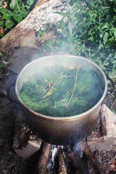Steaming pot of Grenada's famous party dish Oil Down, with callaloo leaves on top. Dasheen, celery, peppers, dumplings, carrots, turmeric, salted meat (fish), breadfruit, coconut milk, onion. NPR article + recipe.