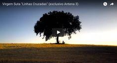 'Linhas cruzadas'perteneceal primer álbum homónimo deVirgem Suta. En esta versión del tema, cuentan con la colaboración de Manuela Azevedo de los Clã.