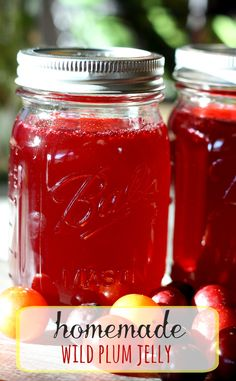 Plum Jelly- Perfect on a slice of homemade bread!-Wild Plum Jelly- Perfect on a slice of homemade bread! Wild Plum Jelly Recipe, Plum Jelly Recipes, Plum Juice, Sauces, Do It Yourself Food, Homemade Jelly, Jam And Jelly, Canning Recipes, Canning Tips