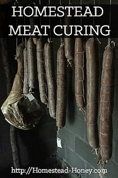 Using Traditional Methods Of Curing And Smoking Meat Is A Delicious Way To Preserve Meat For Enjoyment Year Round. Right now, Share Some Of Our Current Meat Cures, As Well As A Few Of My Favorite Resources So You Can Try It Yourself Homestead Honey Smoker Recipes, Canning Recipes, Diet Recipes, Sushi Recipes, Sausage Recipes, Easy Recipes, Food Storage, Survival Tips, Homestead Survival
