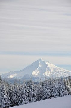 Mt. Hood, Oregon #USA