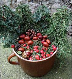 Hříbky z kaštanů | Rodina21 #chestnut #kaštany #zahrada #autumn #podzim Vegetables, Vegetable Recipes, Veggie Food, Veggies