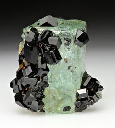 mineralia:    Schorl with Beryl var. Aquamarine from Namibia