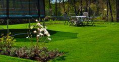Royal Grass Velvet 65