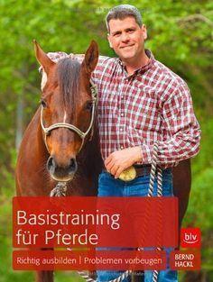 Zauberwaffe Bodenarbeit: Wie sie dir und deinem Pferd hilft