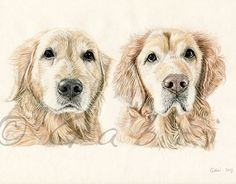 """Check out new work on my @Behance portfolio: """"Winnie & D'ogee"""" http://be.net/gallery/50415737/Winnie-Dogee"""