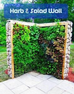 Such a great idea, especially when one does not have a massive yard or space for a garden!
