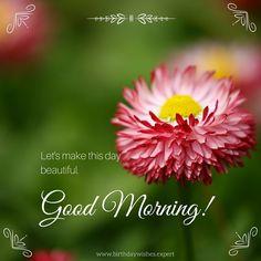 Let's make this day beatiful. Good Morning.